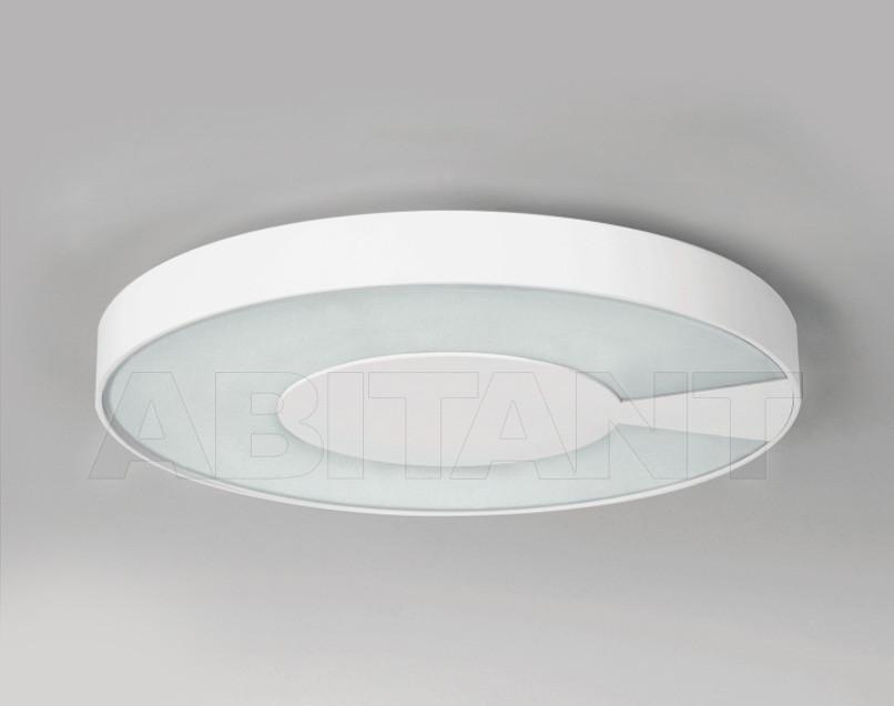 Купить Светильник Lucitalia Lucitalia Light 07240 ZEROTONDA P . F