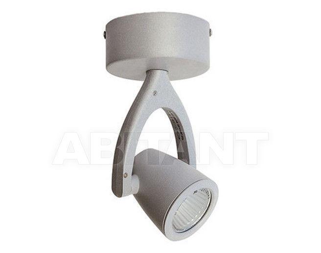Купить Светильник-спот ALS 2012 SGRG-2001