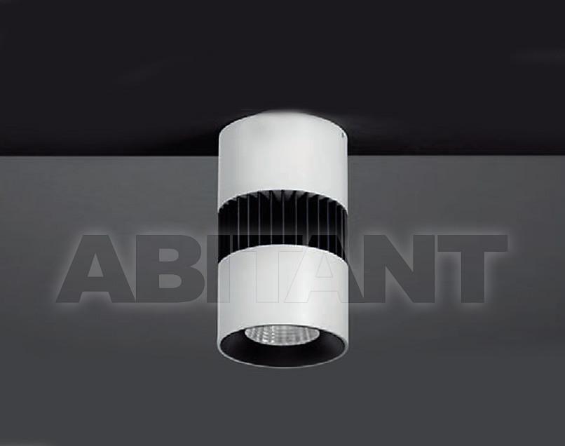 Купить Светильник точечный Brumberg Light 20xiii 12007073