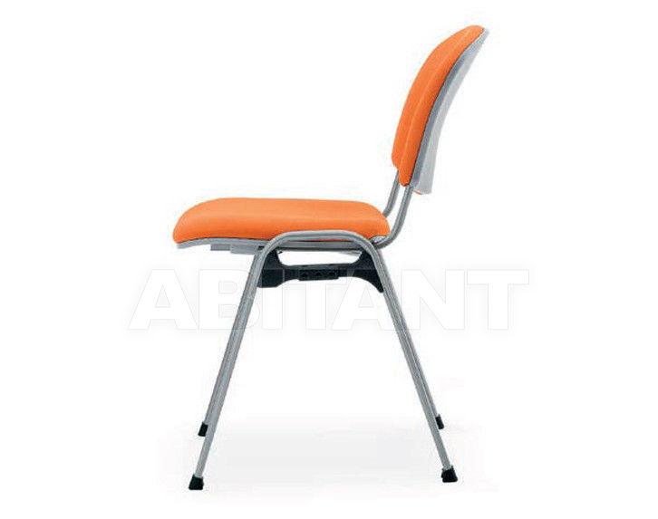 Купить Стул Quinti Chairs 401N