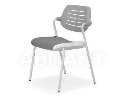 Купить Стул с подлокотниками Quinti Chairs 431P