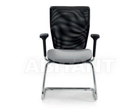 Купить Стул с подлокотниками Quinti Chairs 733
