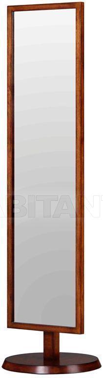 Купить Зеркало напольное W9229KD-07