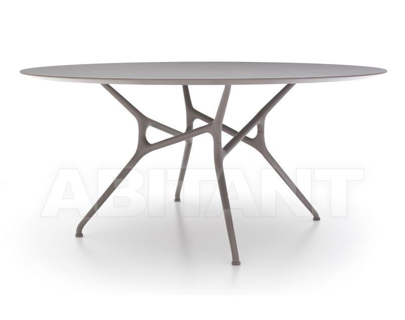 Купить Стол обеденный Branch Cappellini Collezione Sistemi BR_3LA