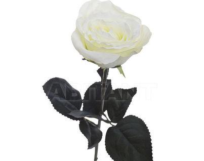 8J-1211S0001 Роза белая 48 см (36)