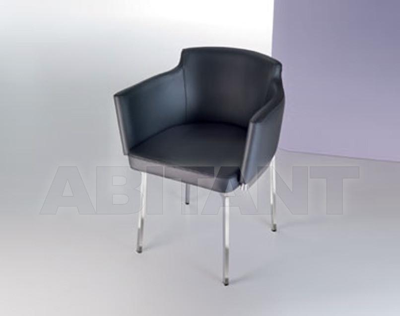 Купить Стул с подлокотниками Ozzio Design/Pozzoli Group srl 2011 S296 SWING