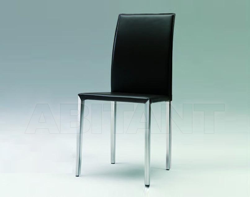 Купить Стул Ozzio Design/Pozzoli Group srl 2011 S325 TOWN