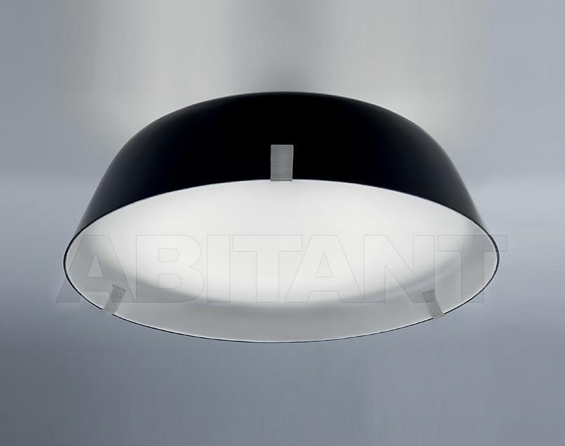 Купить Светильник Vertigo Bird 2011/2012 V01012 5105