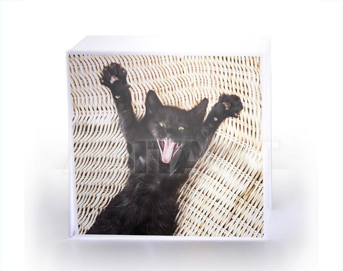 Купить Лампа настольная Acrila Luminaries Cube Lamp Cat