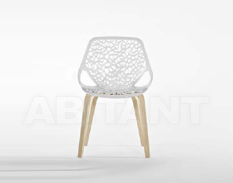 Купить Стул Casprini 2012 CAPRICE wood White