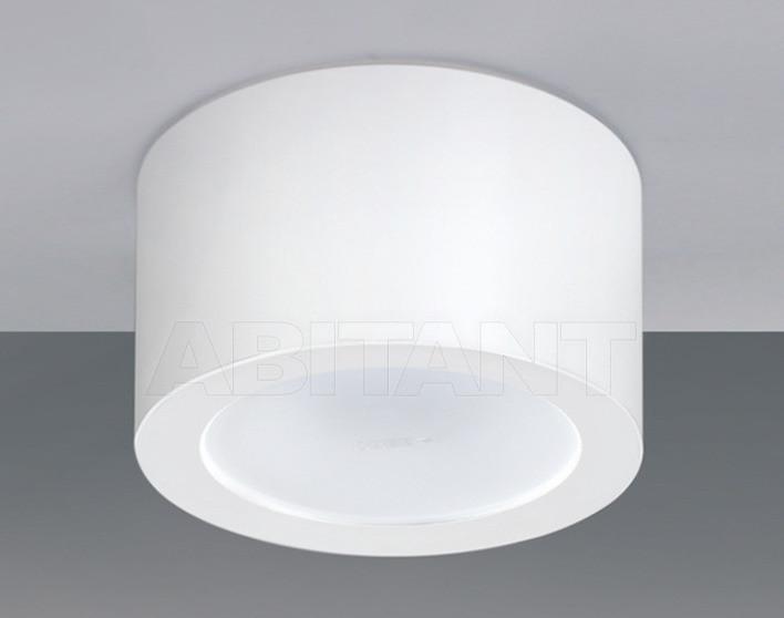 Купить Светильник Egoluce Ceiling Lamps 5514.01