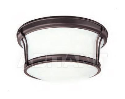 Купить Светильник Hudson Valley Lighting Standard 6510-OB