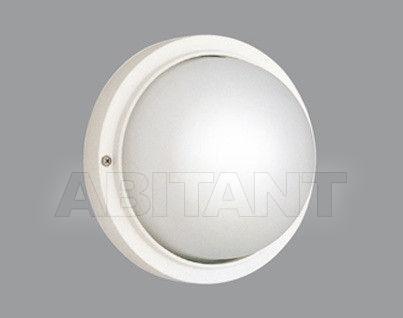 Купить Светильник Boluce Illuminazione 2013 3012.00X