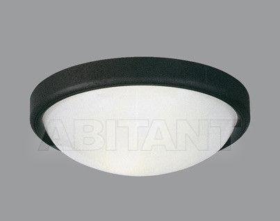 Купить Светильник Boluce Illuminazione 2013 0859.00X