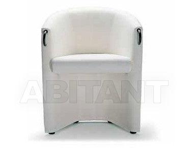Купить Кресло Arflex Estero 2012 10042