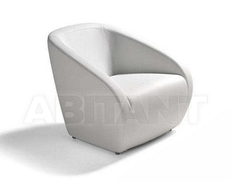 Купить Кресло Dema Firenze Dema Arnold armchair