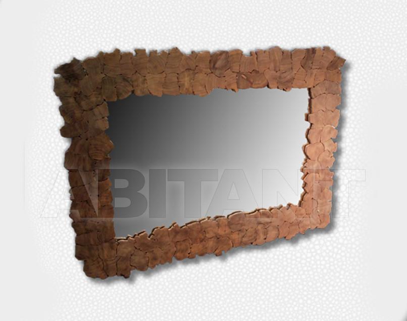 Купить Зеркало настенное Naga Mural SA466