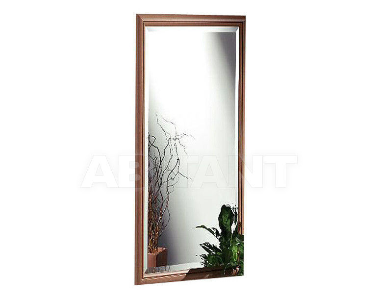Купить Зеркало настенное Baron Spiegel Natur 506 102 64