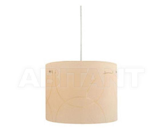 Купить Светильник Shane decorada Home switch Home 2012 TE885