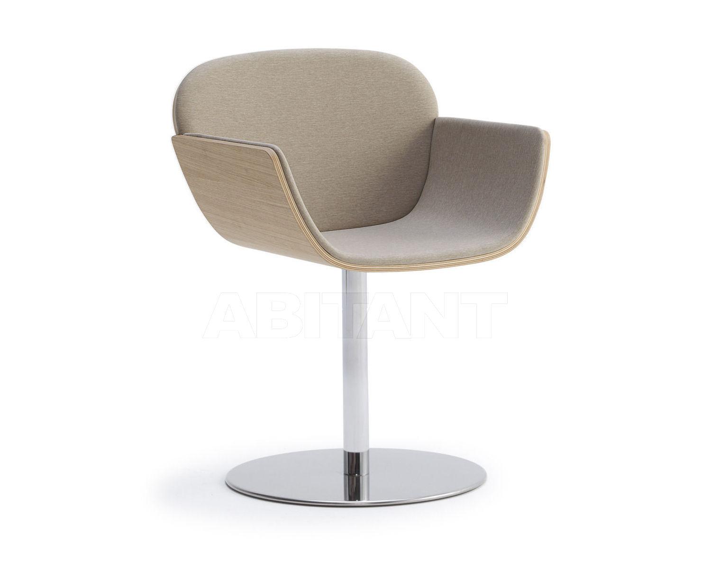 Купить Кресло Accento Furniture 2009-2010 HAIKU C