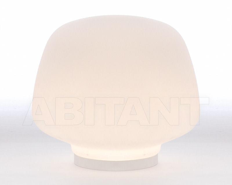 Купить Лампа настольная IAARA Fambuena 2013 F-09100-01