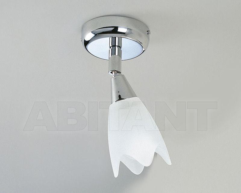 Купить Светильник настенный TULIPANI Antea Luce Generale Collection 4670