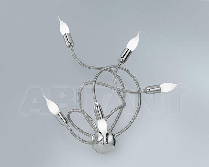 Купить Светильник настенный FLEX LAMP Antea Luce Generale Collection 4894.5