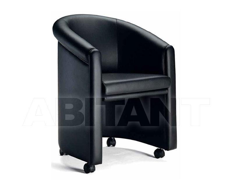 Купить Кресло SIMON  Elledue Office UPR2802