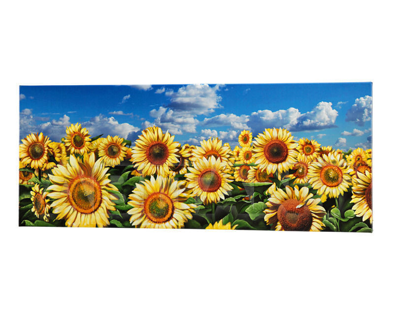 Купить Картина Pintdecor / Design Solution / Adria Artigianato Furnishing Paintings P3258