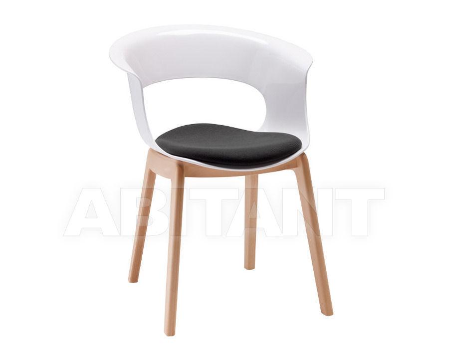 Купить Стул с подлокотниками Scab Design / Scab Giardino S.p.a. Marzo 2800 FN 310 + 1504 32