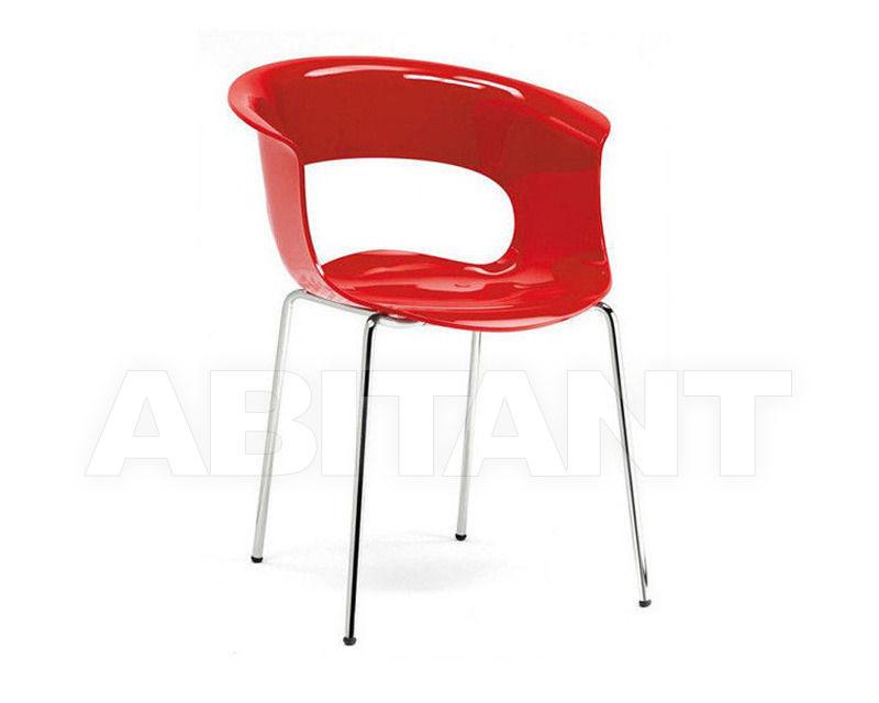 Купить Стул с подлокотниками Scab Design / Scab Giardino S.p.a. Marzo 2690 340