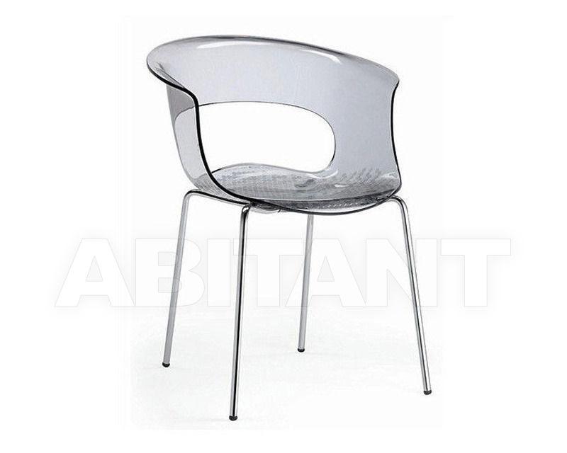 Купить Стул с подлокотниками Scab Design / Scab Giardino S.p.a. Marzo 2690 183