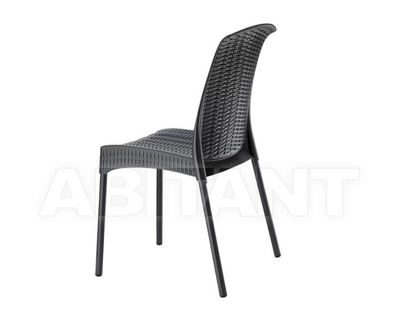 Купить Стул Scab Design / Scab Giardino S.p.a. Novita Comfort 2630 AV 81