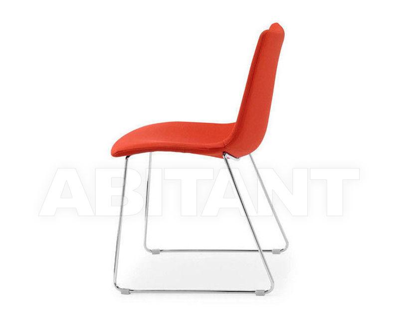 Купить Стул Scab Design / Scab Giardino S.p.a. Novita Comfort 2641 T4 52