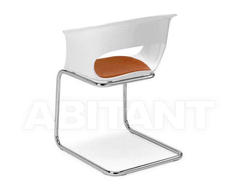 Купить Стул с подлокотниками Scab Design / Scab Giardino S.p.a. Novita Comfort 2259 100 41