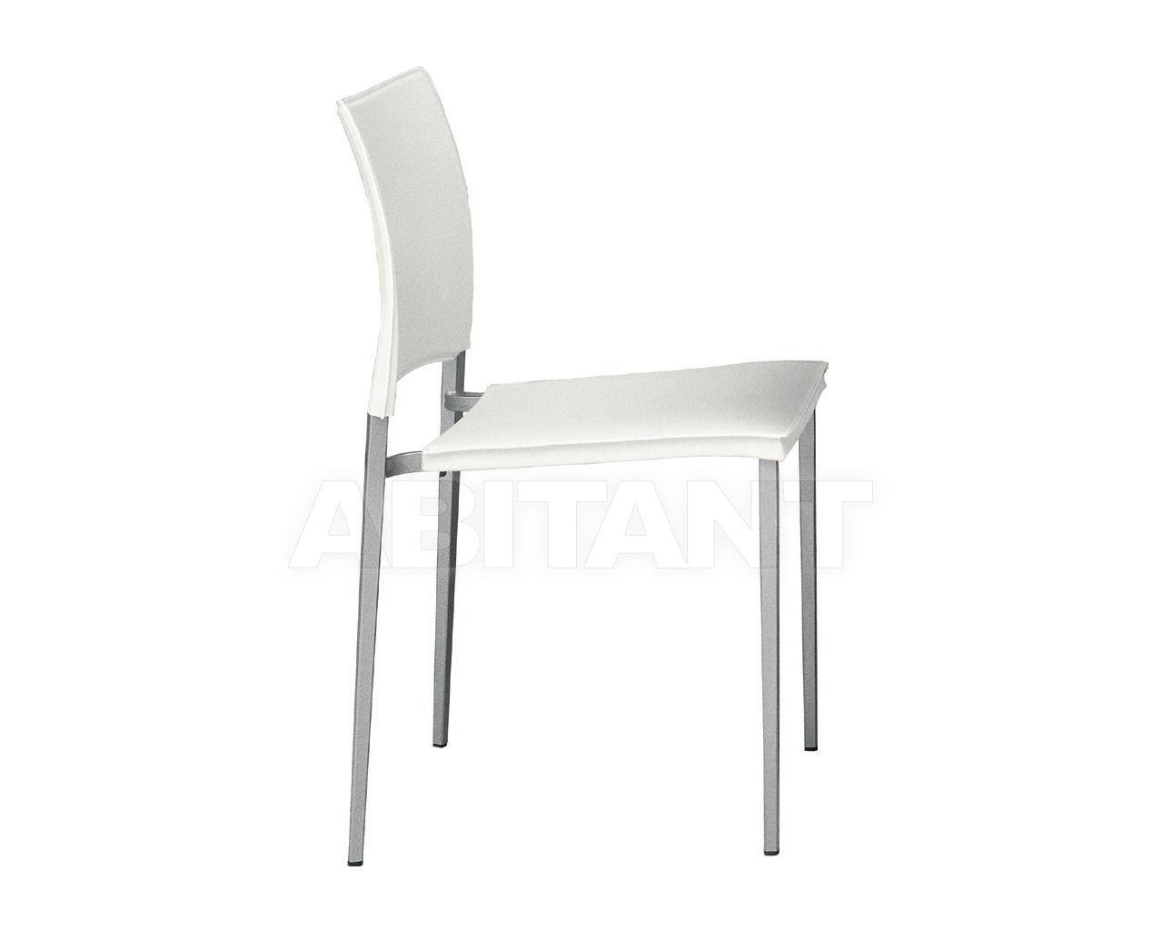 Купить Стул VIENNA Biebi /Sedie Design Equilibrium B345