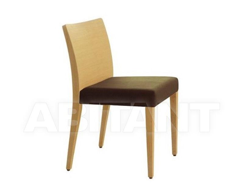 Купить Стул GLAM  Pedrali 2012 430 2