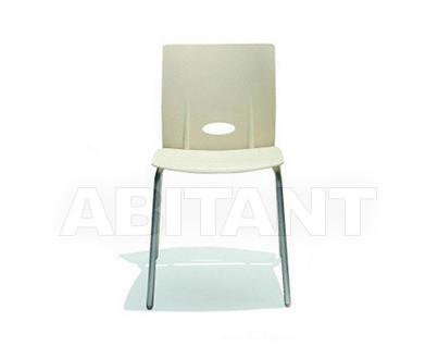 Купить Стул VIOLA Casprini 2011 - Europe VIOLA chair