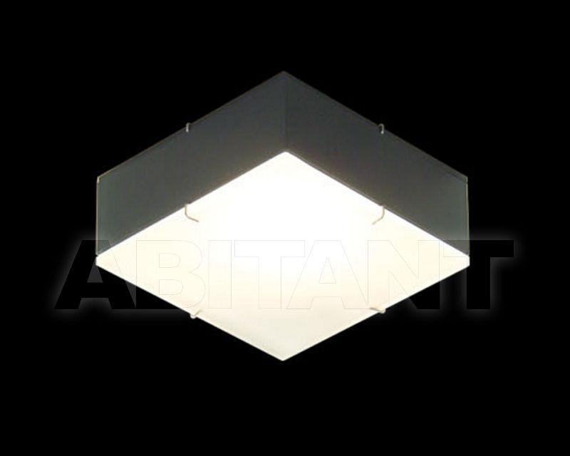 Купить Светильник Nomibu  TossB 2015 T12C2HGL