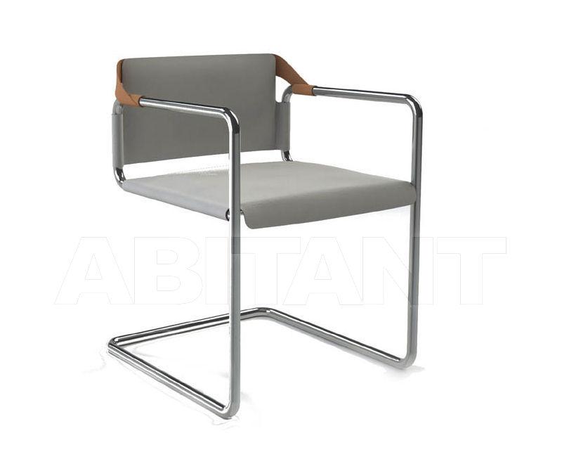 Купить Стул с подлокотниками VIENNA Amura Armchair AM016 010