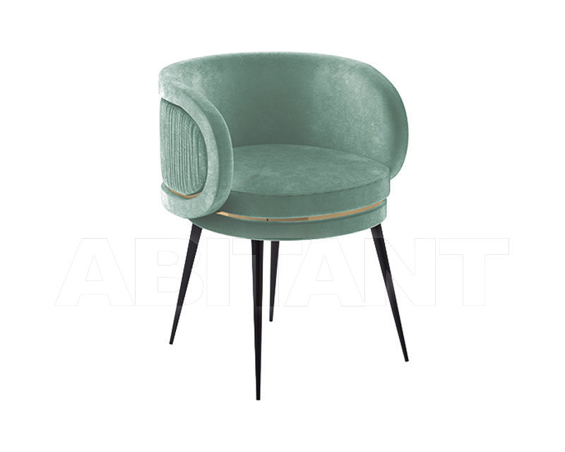 Купить Стул с подлокотниками Private Label Delicartis AVA | Dining Chair
